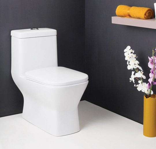 6 Points To Consider When Buying A Water Closet - OfBusiness